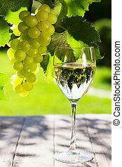 videira, vinho branco, uva, vidro