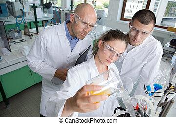 videnskab, forskning, projekt, ind, laboratorium