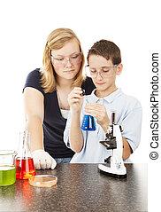 videnskab, ind, skole