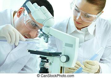 videnskabelige, gransken