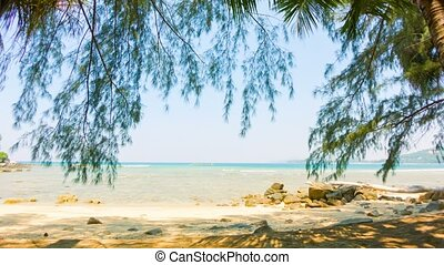 Deserted coast of the tropical sea with trees and rocks