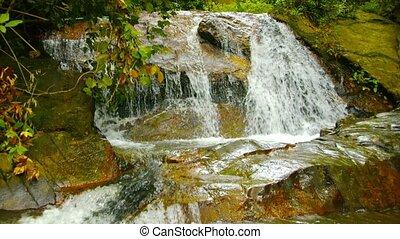 Small waterfall in the rainforest. Phuket, Thailand