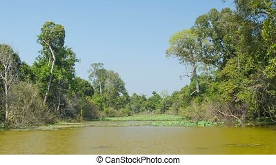 Typical pond on a hot dry season. Cambodia - Video 1080p -...