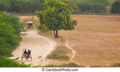 Carts with horses on a rural road in the evening. Burma....
