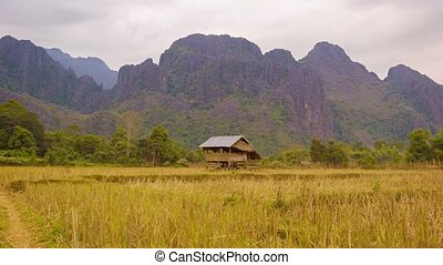 Laos. Empty rice field with straw on a background of...