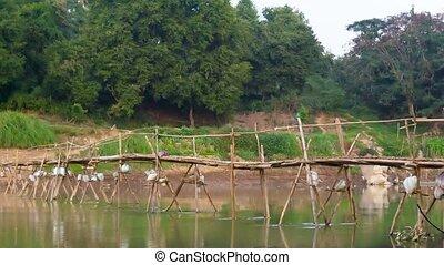 Old wooden bridge across the river. Laos, Luang Prabang -...
