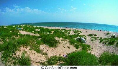 sandy beach full of people