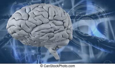 video, mózg, ludzki, cyfrowy, 4k, rodzony