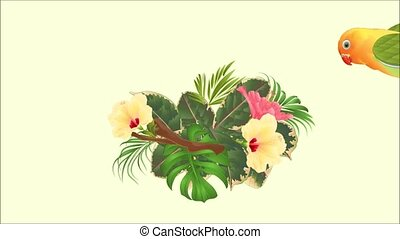 Video motion Parrot lovebird Agapornis and hibiscus , palm, philodendron, ficus motion