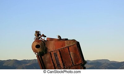 Video of a Heron resting on a old rusty cannery boiler one...