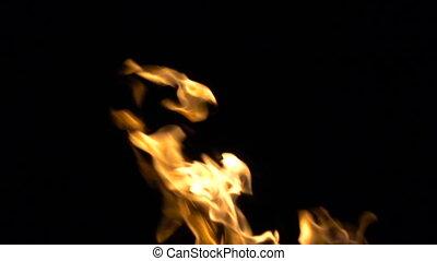 Video of burning danger fire on black background