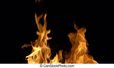 Video of burning fire