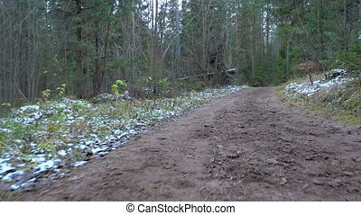 Video of frozen dirty road in the forest