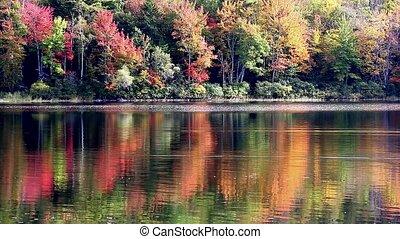 Video of Norton Pond in Maine
