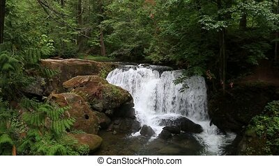High definition 1080p movie of Whatcom Falls in Bellingham WA with water gushing audio sound 1920x1080