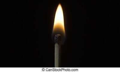 Video of wood thin burning matchstick