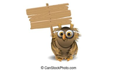 owl and a wooden plaque - video owl and a wooden plaque