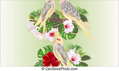 Video seamless loop animation of illustration vertical border seamless background Parrots yellow  and red and white hibiscus