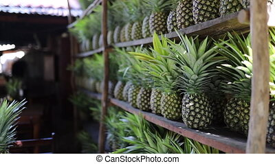 Video of a bunch of pineapples placed on a shelf in a restaurant in Mexico
