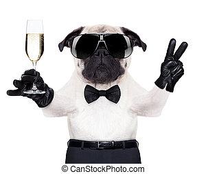 vidrio, perro, champaña