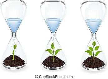 vidro água, clocks, gotas, brotos