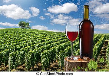 vidro, e, garrafa vinho vermelho, contra, vinhedo, paisagem
