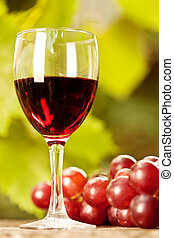 vidro, grupo, uvas, vinho