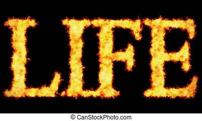 vie, concept, mot, brûlé, texte, arrière-plan noir