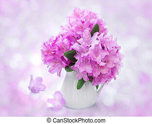 vie, encore, rhododendron, jug., fleurs blanches