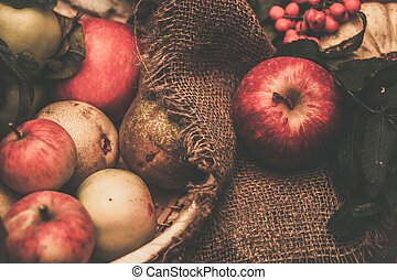vie, encore, thanksgiving, jour, automnal