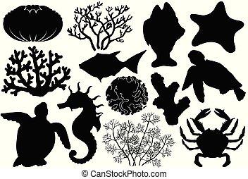vie, fish, mer, organismes, coquilles, silhouettes, océan, coraux, crabe, turtle., cheval