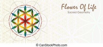 vie, fleur, bannière