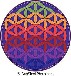 vie, fleur, coloré, géométrie, figure., illustration, géométrique, vecteur, sacré
