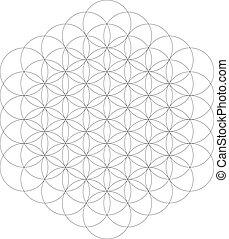 vie, fleur, géométrie, figure., illustration, géométrique, vecteur, sacré, element.
