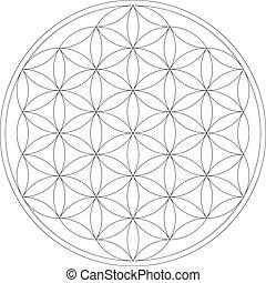vie, fleur, géométrie, figure., illustration, géométrique, vecteur, sacré