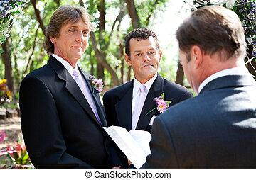 vie, gay, -, mariage, engagement