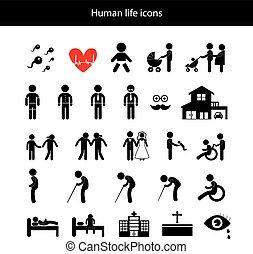 vie, humain, icône
