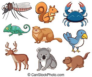 vie sauvage, ensemble, beaucoup, grand, animaux, types