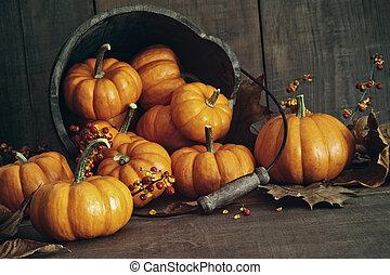 vie, seau, potirons, automne, petit, encore