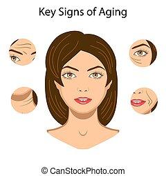 vieillissement, isolé, illustration, vecteur, clã©, signes