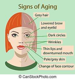 vieillissement, vieux, jeune, figure, peau, vecteur, deux, chanter, types