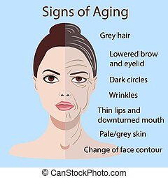 vieillissement, vieux, jeune, isolé, figure, peau, vecteur, deux signes, types