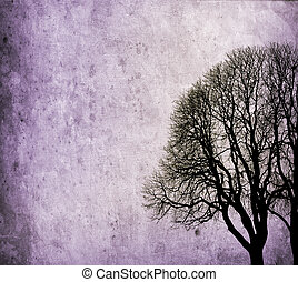 viejo, árboles