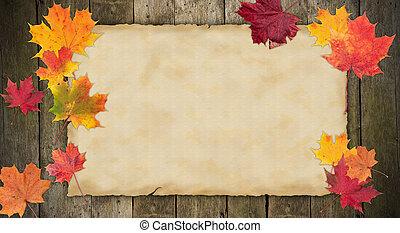 viejo, blanco, papel, con, hojas del arce del otoño