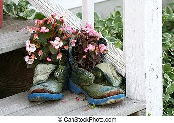 viejo, botas, florecer