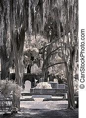 viejo, cementerio, infrarrojo