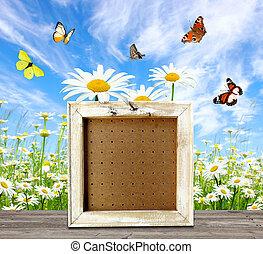viejo, marco, en, piso de madera, encima, primavera, pradera