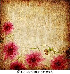 viejo, papel, plano de fondo, con, rosa florece