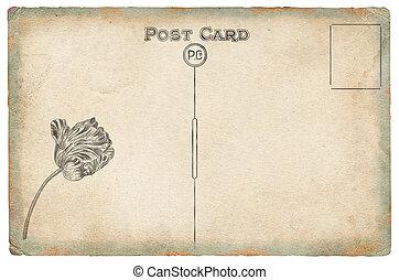 viejo, postal