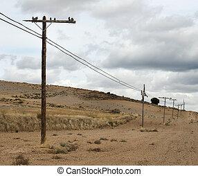 viejo, postes, eléctrico